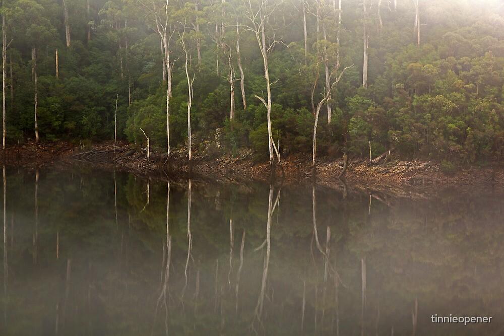 Misty Sticks by tinnieopener