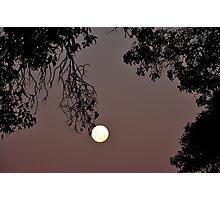 lovers' moon Photographic Print