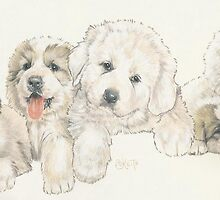 Great Pyrenees Puppies by BarbBarcikKeith