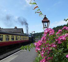 Getting up steam at Levisham station by Sue Gurney