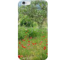 Campo Poppies iPhone Case/Skin