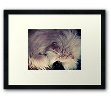 It's All About Control ... Framed Print