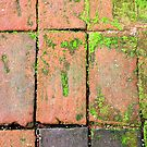 Bricks Walkway by Henrik Lehnerer