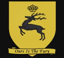 House Baratheon banner by timnock