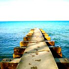 Lake Michigan by S. Raja