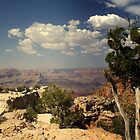 Grand Canyon by stevefinn77