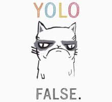 Tribute to Grumpy Cat: YOLO ... FALSE  by AllRiot-tshirts