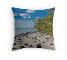 Florida Waterscape Throw Pillow