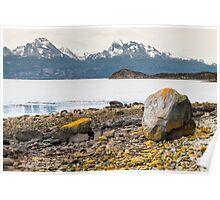 Lake and yellow rocks Poster