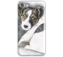 Jack Russell Terrier Puppy  iPhone Case/Skin