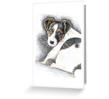 Jack Russell Terrier Puppy  Greeting Card