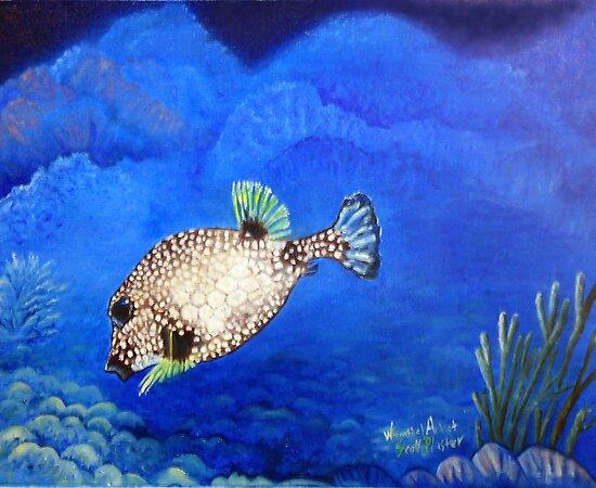 Casper - Ocean Series Tropical Fish by Scott Plaster