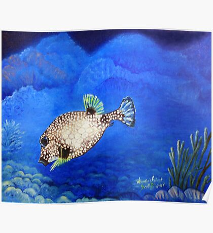 Casper - Ocean Series Tropical Fish Poster