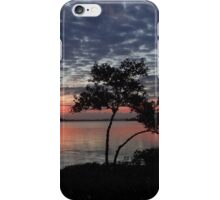Polk~A~Dot Sky iPhone Case/Skin