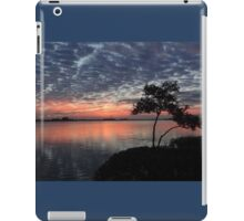 Polk~A~Dot Sky iPad Case/Skin