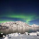 Arctic night by Frank Olsen