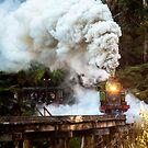 Steaming Ahead by Karen Gunn