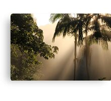 Foggy Winter Morning Canvas Print
