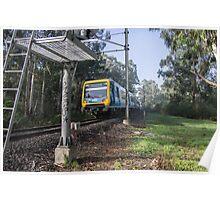 Train on Hurstbridge Diamond Creek track 20130619 5292 Poster
