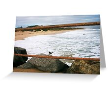 Defiantly A Big Day At City Beach Nine 26 06 13 Greeting Card