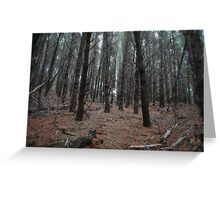 Dead mans pond forest Greeting Card