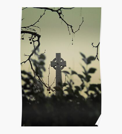Gravestone over a hedge Poster