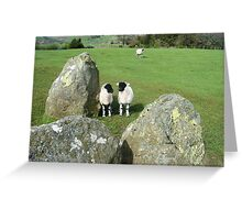Lambs at Castlerigg Stone Circle Greeting Card