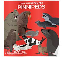 I Am Thankful For Pinnipeds Poster