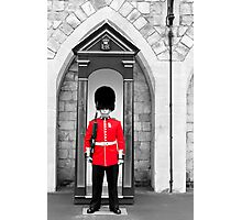 On Guard Photographic Print