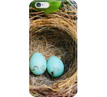 Robins Eggs iPhone Case/Skin