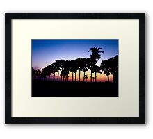 Sunset and Tree in the Queue Framed Print