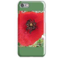 Poppy in the rain iPhone Case/Skin