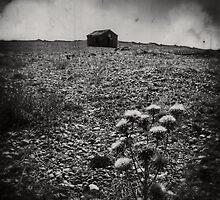 Hut by Nicola Smith