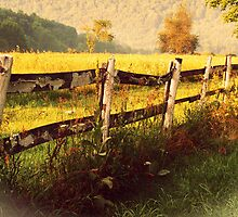 Old Fence rustic decor photography home decor by jemvistaprint