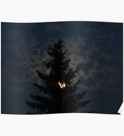 Tree, moon and coulds at night Poster