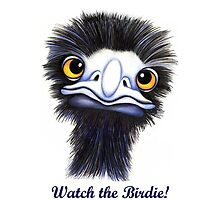 Watch the Birdie by Margaret Sanderson