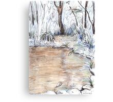 Billabong Canvas Print