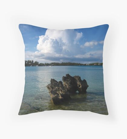 Rock Mimicry Throw Pillow