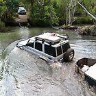 Surviving Nolans Creek  by dozzam