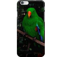 Green Parrot iPhone Case iPhone Case/Skin