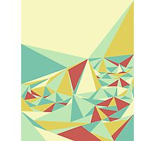 Facet - Bloom Tone Photographic Print