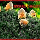 Merry Christmas ! by kindangel