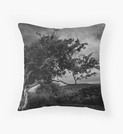 Wild Wales Throw Pillow