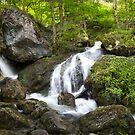 The Waterfalls at Myrafalle in Austria  by Zoltán Duray