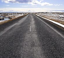 the road to höfn, iceland by gary roberts