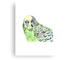 Green Budgie Watercolour Canvas Print