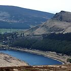 Yeoman Hey Reservoir by Paul  Green