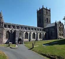 St Davids Cathedral 1 by Paul  Green