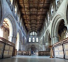 Inside St Davids Cathedral  by Paul  Green
