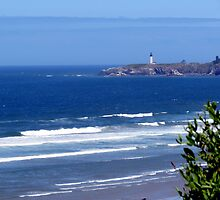 Yaquina Head Lighthouse. Newport, Oregon by trueblvr